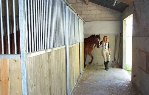 vacances à cheval : espace pour chevaux