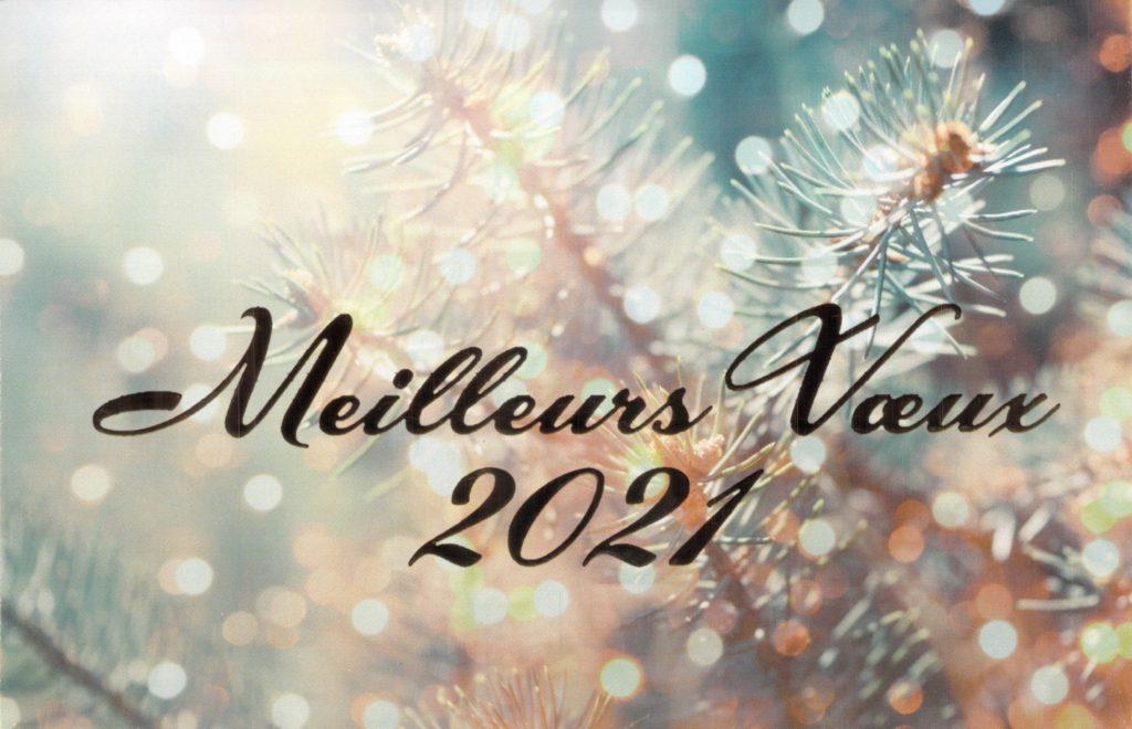 Nous vous présentons nos meilleurs voeux pour 2021